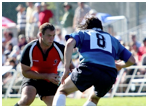 Sports and politics essay